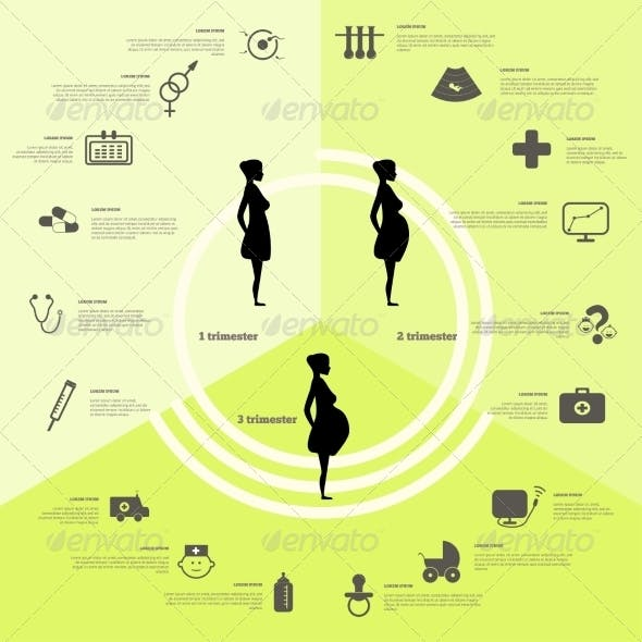 Pregnancy and Birth Infographic