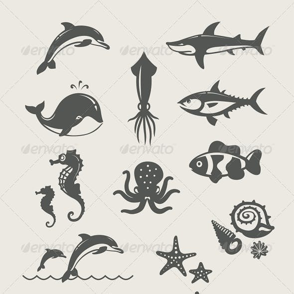 Ocean and Sea Fishes