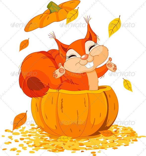 Squirrel in pumpkin - Animals Characters