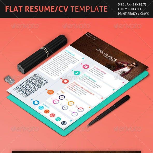 Flat Resume/CV Template