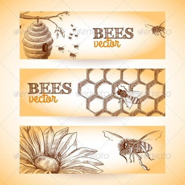 Bee Banner Sketch