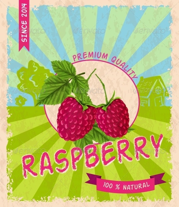 Raspberry Retro Poster - Flowers & Plants Nature
