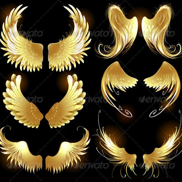 Golden Wings of Angels