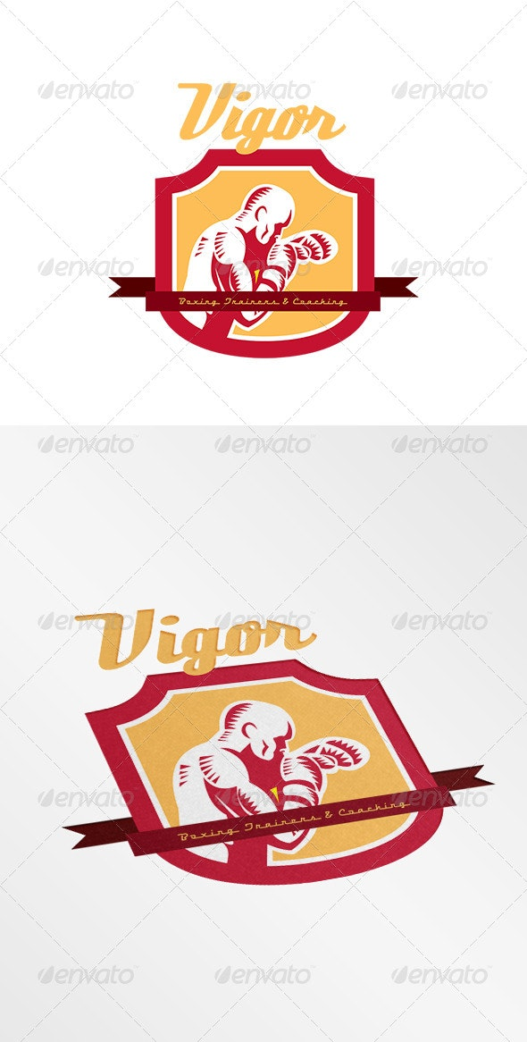 Vigor Boxing Training and Coaching Logo