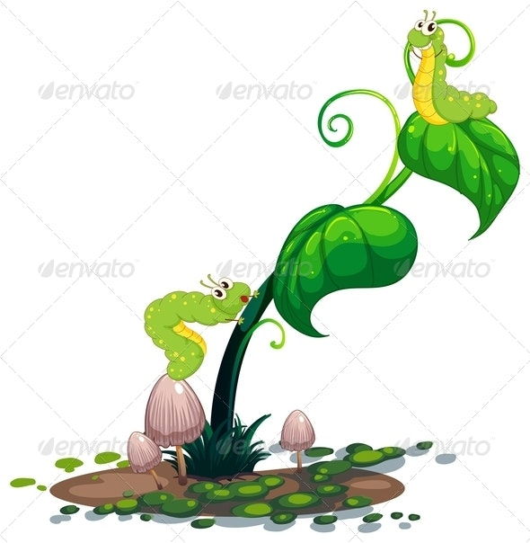 Plant with Caterpillars - Animals Characters