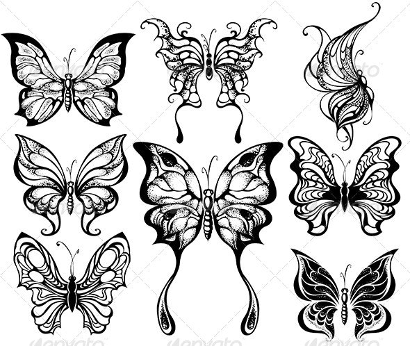 Silhouettes of Exotic Butterflies