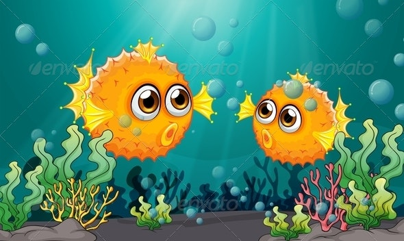 Two puffer fish under the sea