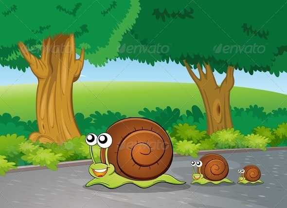 Snails on the Path