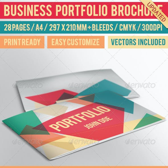 Business Portfolio Brochure