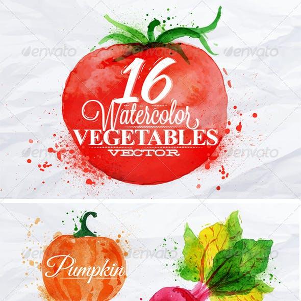 Vegetables Watercolor