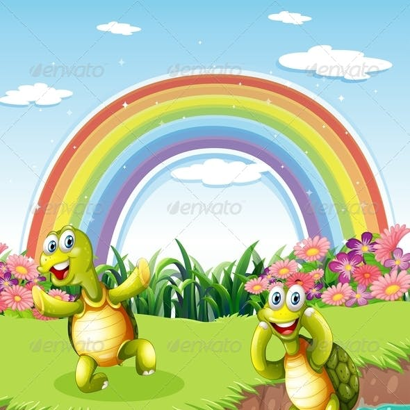 Two Playful Turtles with Rainbow