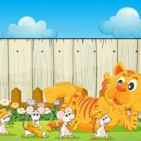 Tiger and a Group of Rats at the Backyard