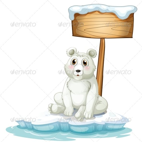 sad Bear on Ice with Empty Sign