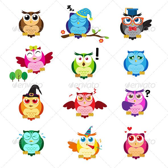 Owls with Different Expressions