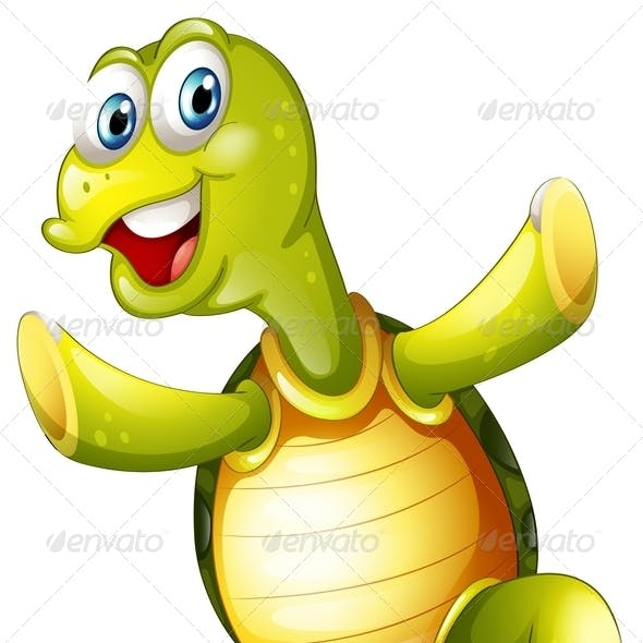 A Smiling Turtle