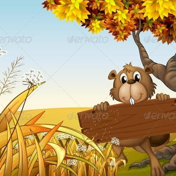 Beaver at the Top of a Hill Holding a Wooden Sign