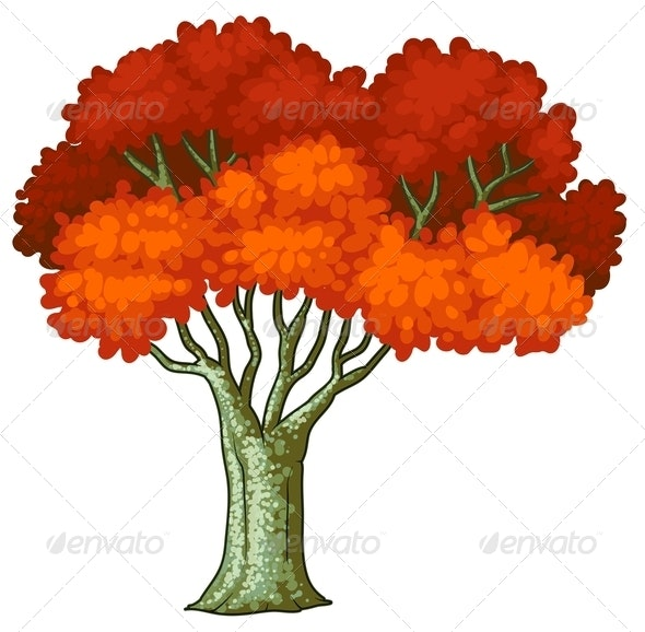 A Tree with Red Leaves - Flowers & Plants Nature