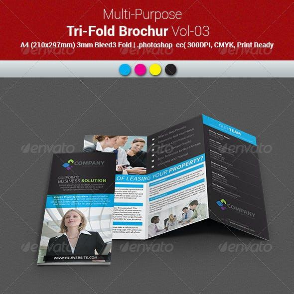 Multipurpose Business Tri-Fold Brochure Vol-03