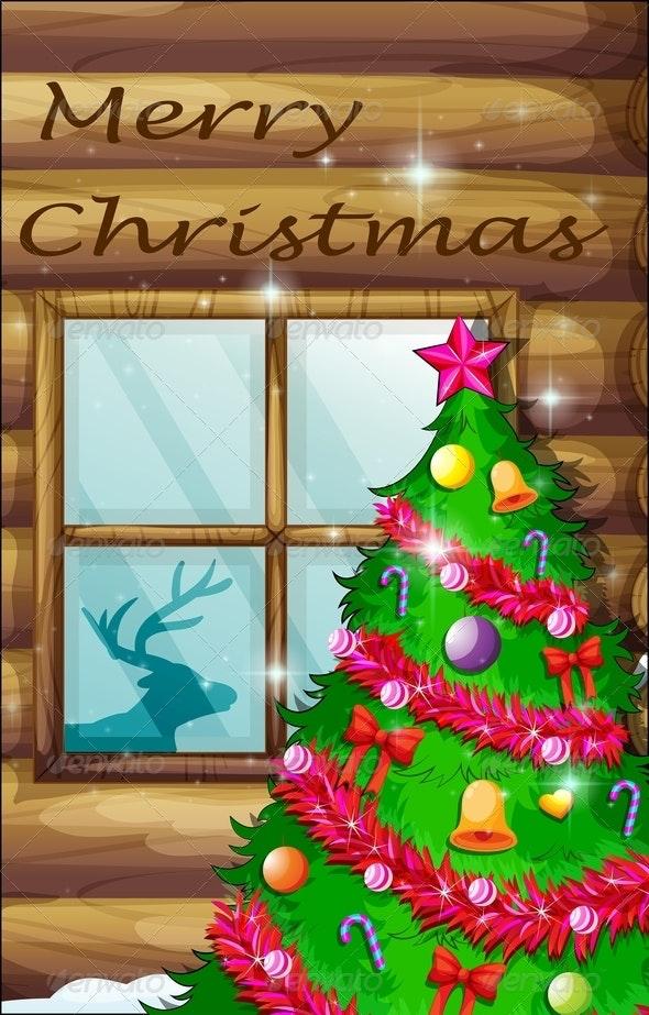 Christmas Tree Near Window - Flowers & Plants Nature