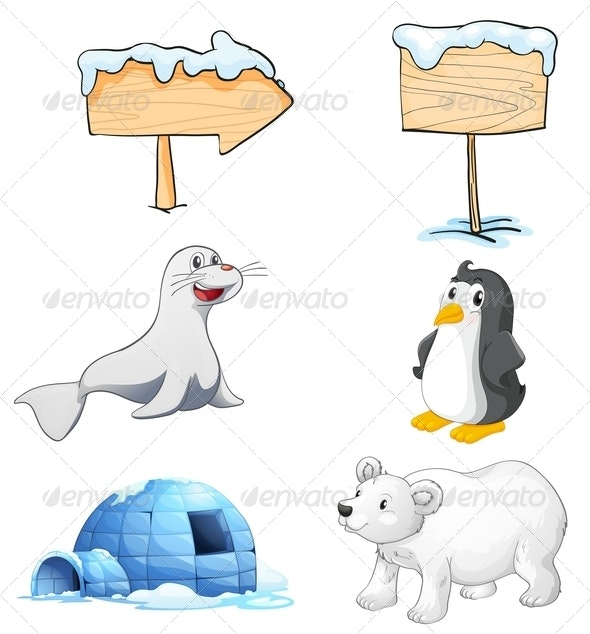 Signboards, Animals and an Igloo at the North Pole - Animals Characters