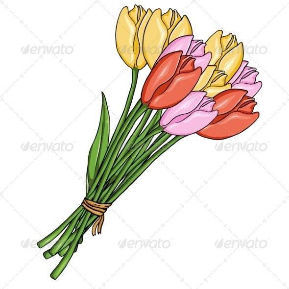 Cartoon Bouquet of Colored Tulips - Flowers & Plants Nature