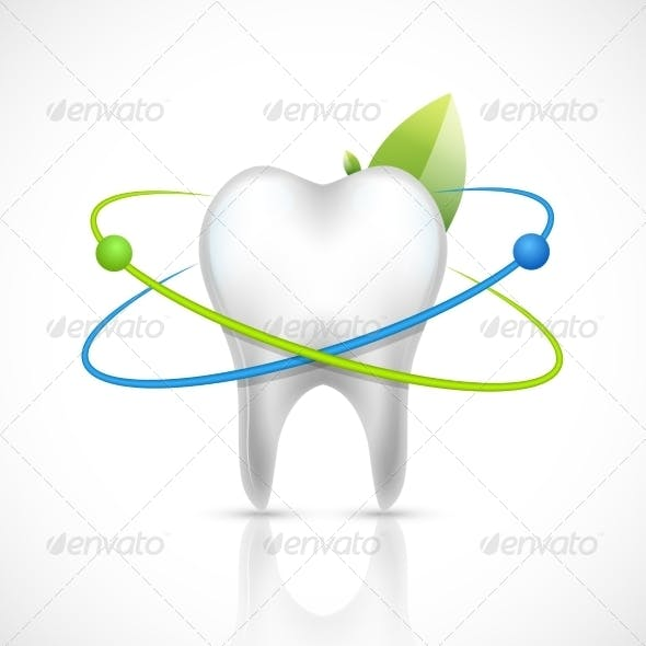 Healthy Tooth Realistic