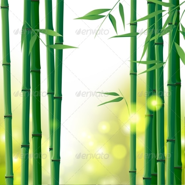 Bamboo Background - Flowers & Plants Nature
