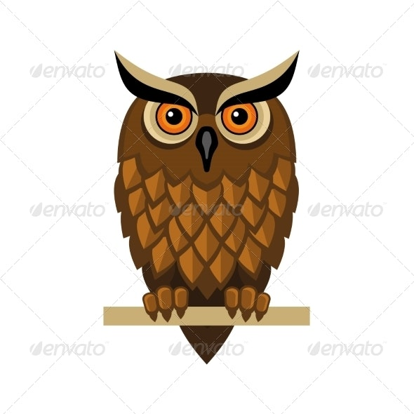 Owl Isolated on White - Animals Characters