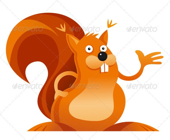 Squirrel - Animals Characters