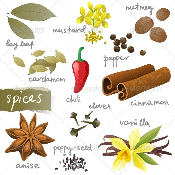 Set of Spices
