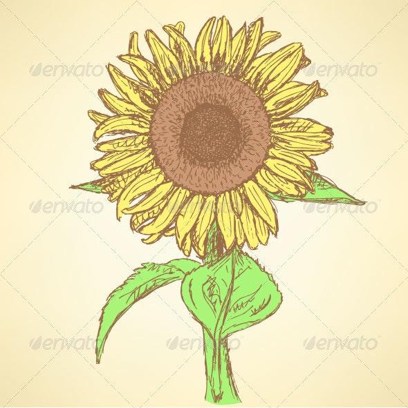 Sunflower Sketch Background - Backgrounds Decorative