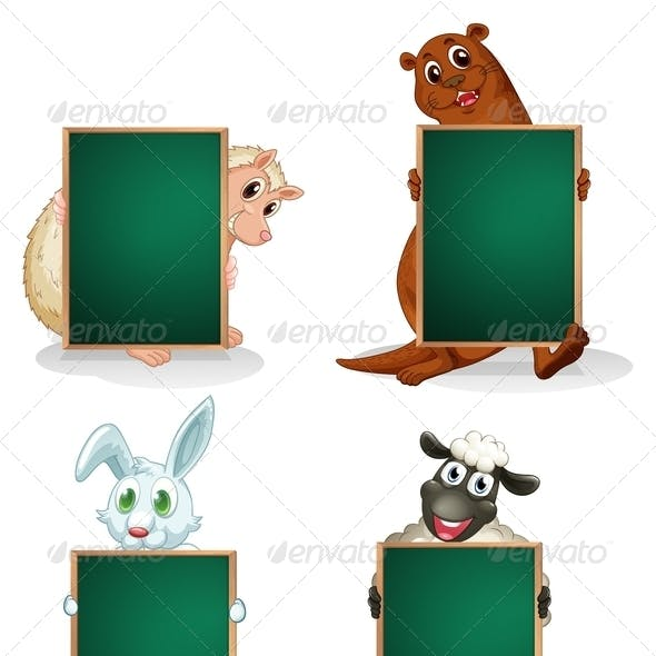 Blackboards in Front of the Animals