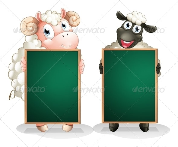 Black and a White Sheep with Empty Blackboards - Borders Decorative