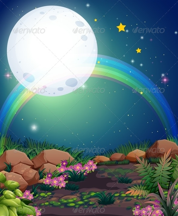 A rainbow at night - Flowers & Plants Nature