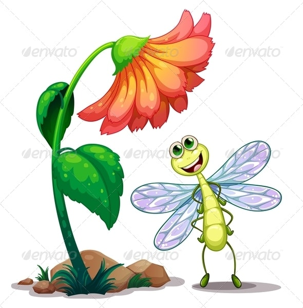 Dragonfly Below the Flower - Animals Characters