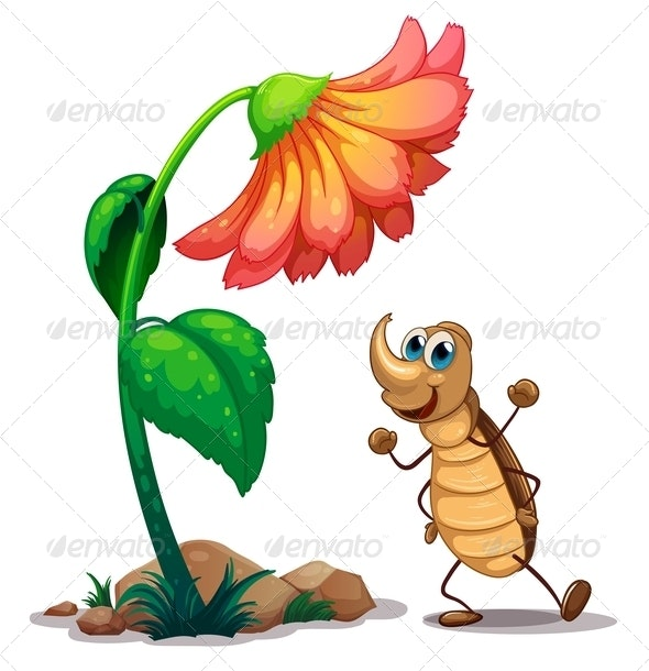 An Ant Dancing Below the Big Flower - Animals Characters