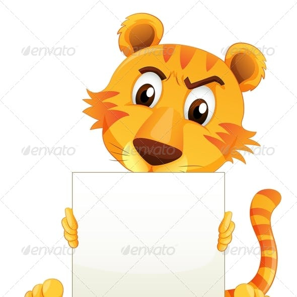 A Sad Tiger Sitting Holding an Empty Cardboard