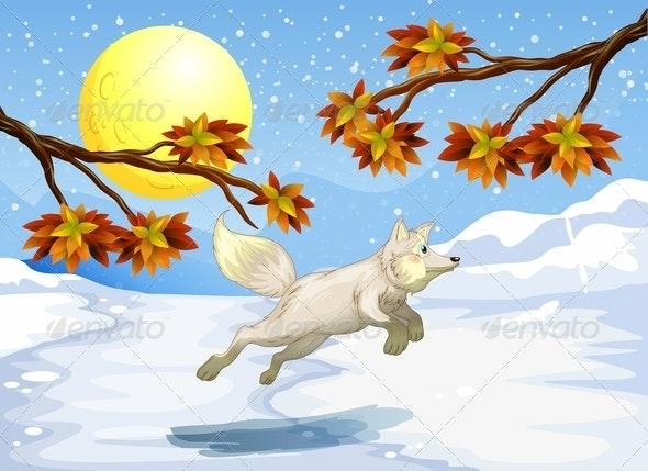 Fox Jumping - Animals Characters