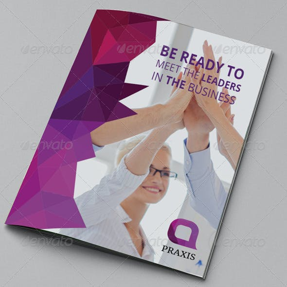Colorful Business Brochure 14 Pages