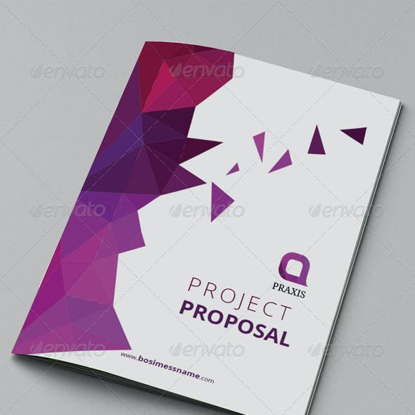 Colorful Proposal Templates