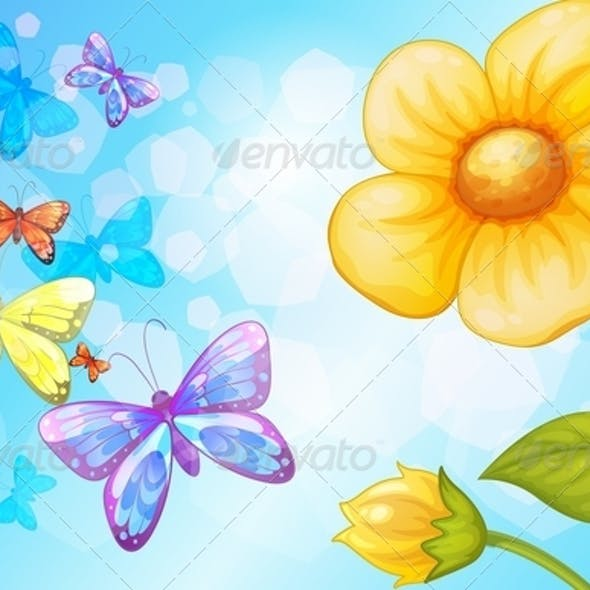 Flower with Butterflies