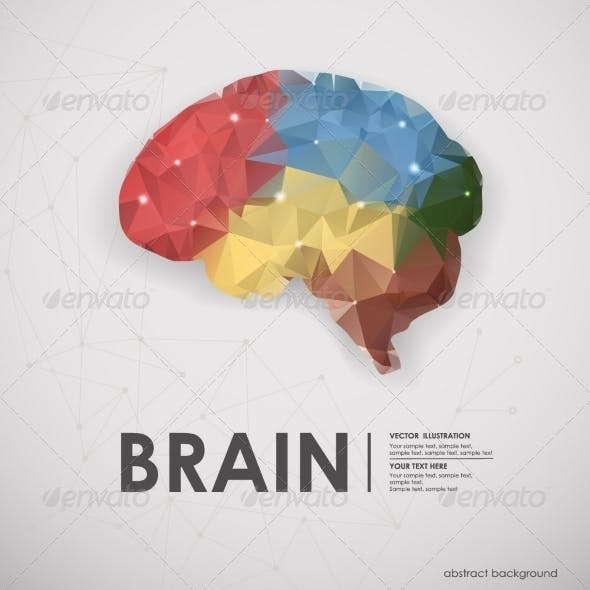 Human Brain in Polygons