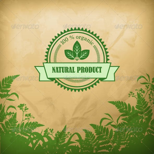 Natural Organic Herbal Vector Composition