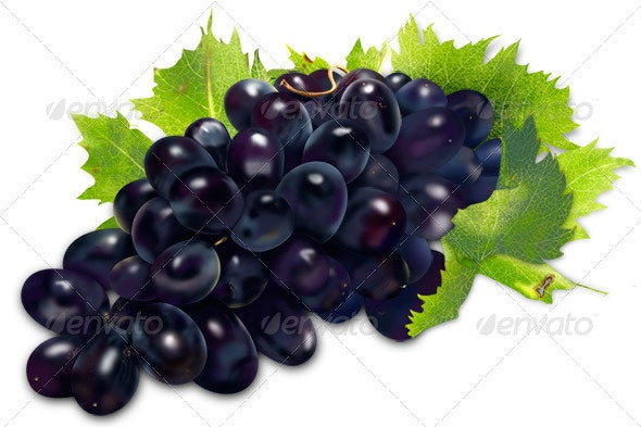 Grapes Illustration - Objects Illustrations