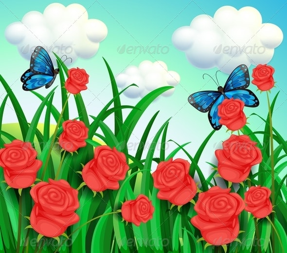 Butterflies in the Garden - Flowers & Plants Nature