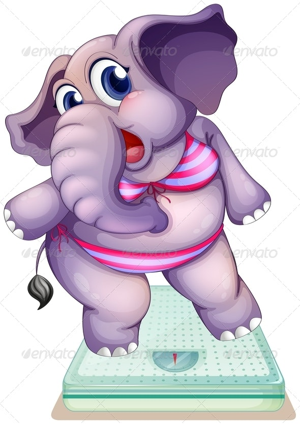An Elephant above the Weighing Scale - Animals Characters