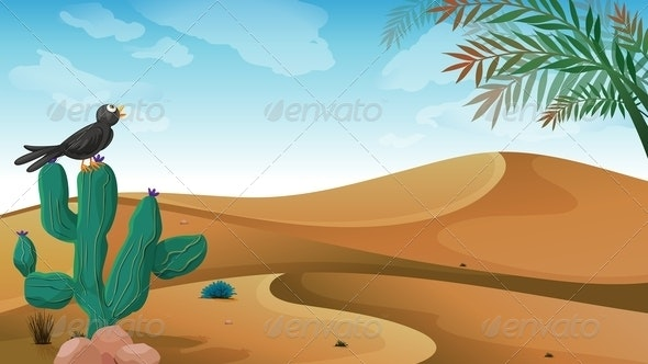 A Bird above the Cactus Plant at the Desert - Landscapes Nature