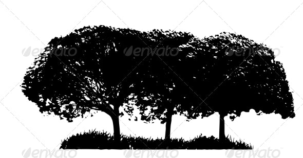 Tree Silhouettes - Seasons Nature
