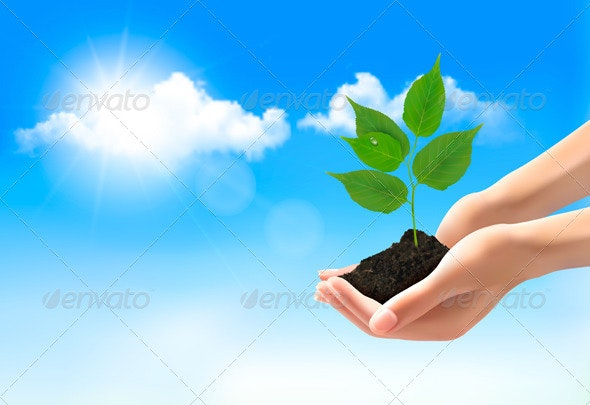 Hands Holding Young Plant - Flowers & Plants Nature