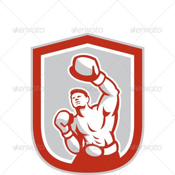 Boxer Boxing Punching in Shield